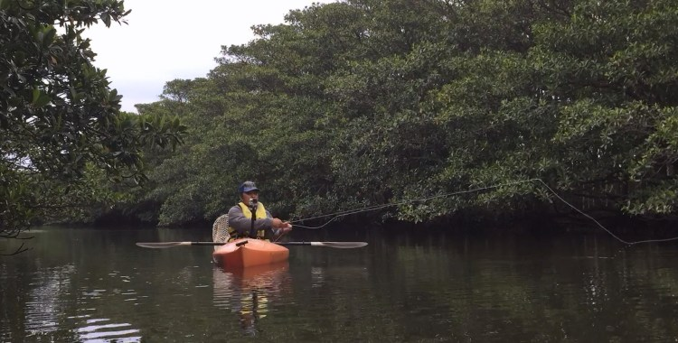 Mangrove Island - Soul Laundry with Fly Fishing