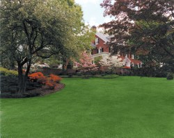 Small Of Beautiful Lawn And Landscape