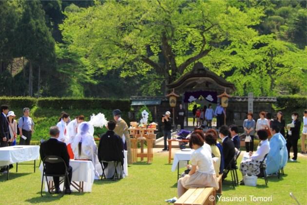 一乗谷朝倉氏遺跡前で行われた結婚式=福井市にて2012年4月撮影