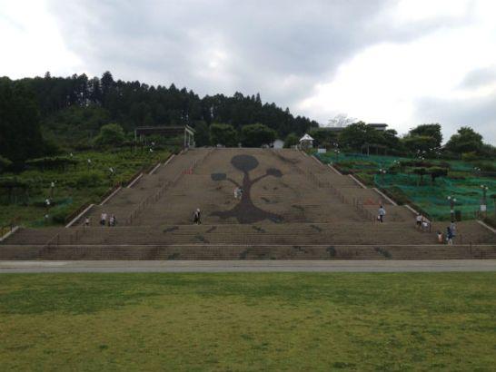 宮ヶ瀬湖畔園地の大階段