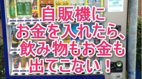 自販機にお金を入れたら、飲み物もお金も出てこない!