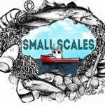 cropped-small-scales-banner1