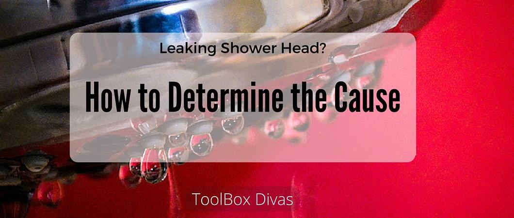 Repairing that Leaky Shower Head Nuisance