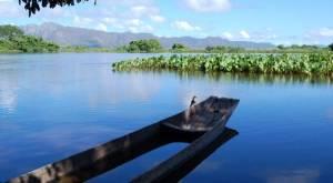 Top 10 maiores rios do Brasil