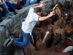 6 Fiestas más crueles en las que son maltratados animales