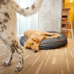 urban denim dog bed by P.L.A.Y.