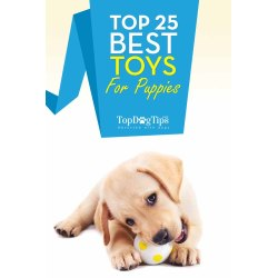 Riveting Dogs That Chew A Lot Dog Toys Dogs That Chew A Lot Puppy Toys Teething Puppy Toys Aggressive Chewers Uk Dog Toys Aggressive Chewers Amazon bark post Dog Toys For Aggressive Chewers