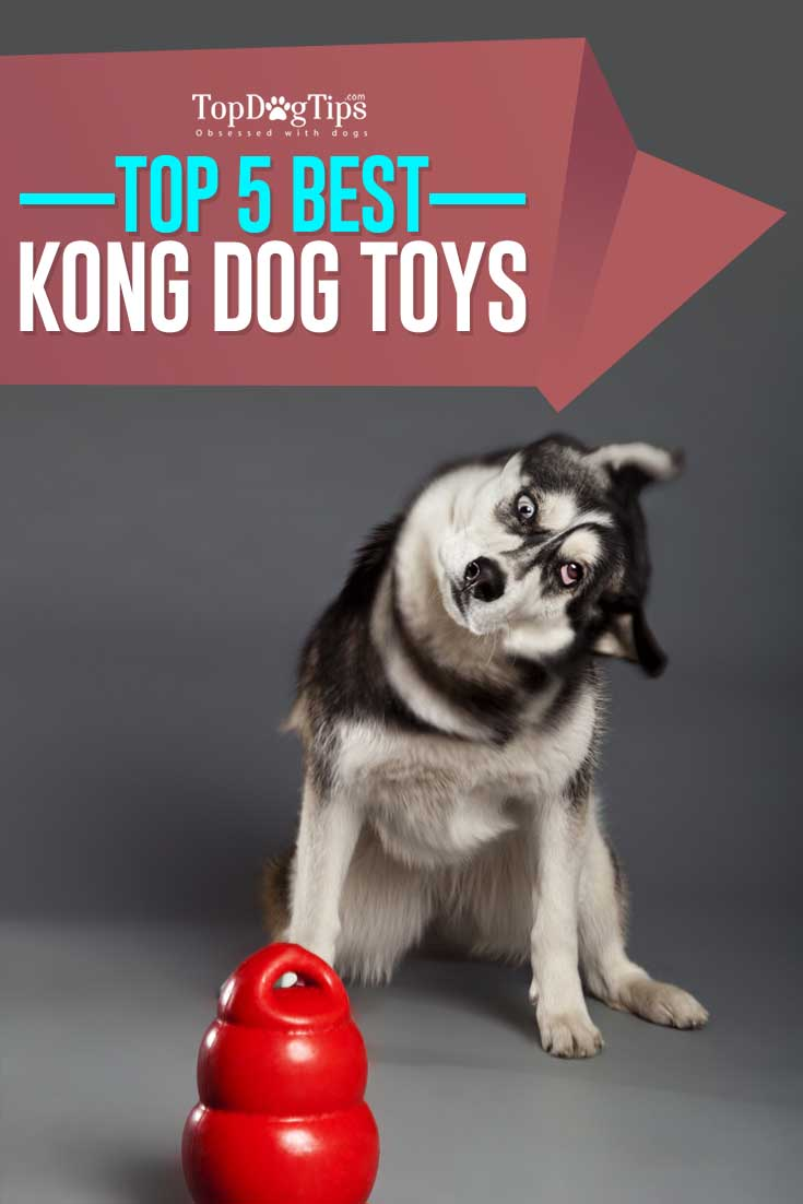 Cordial Adult Dogs Homemade Dog Toys Aggressive Chewers Dog Toys Kong Dog Toys Puppies Kong Dog Toys Aggressive Chewers Amazon Puppies bark post Dog Toys For Aggressive Chewers