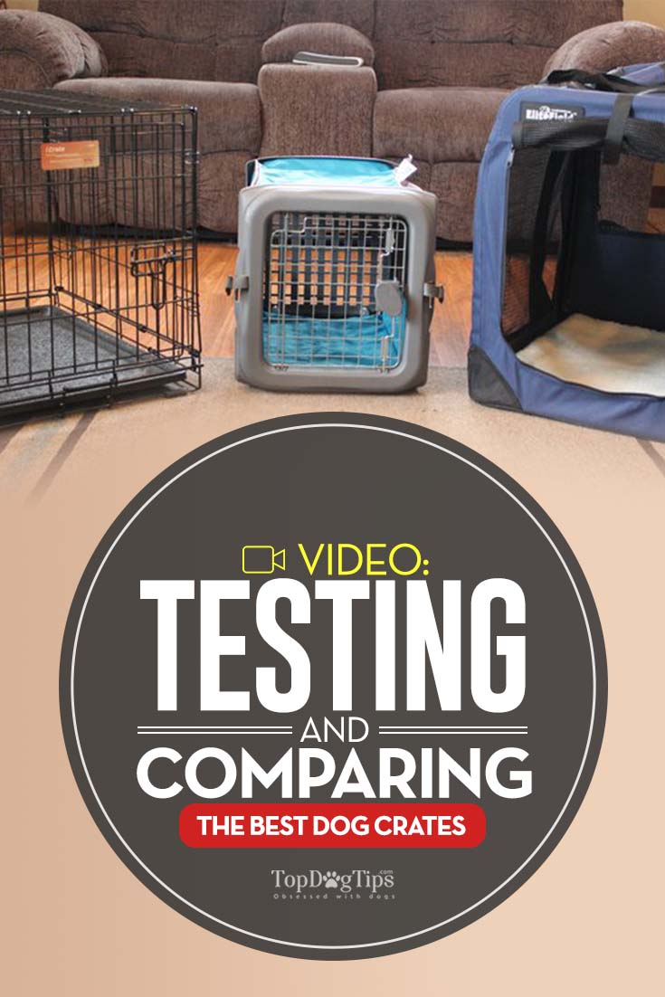 Staggering Dog Crate Comparison Dog Crate Review Comparison Test Dog Crate Mats Dog Crate Reddit bark post Best Dog Crate