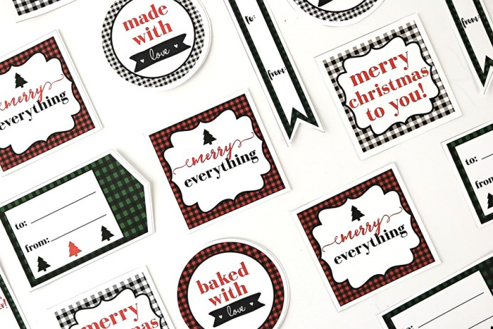 Cactus Gift and Printable Christmas Gift Tags
