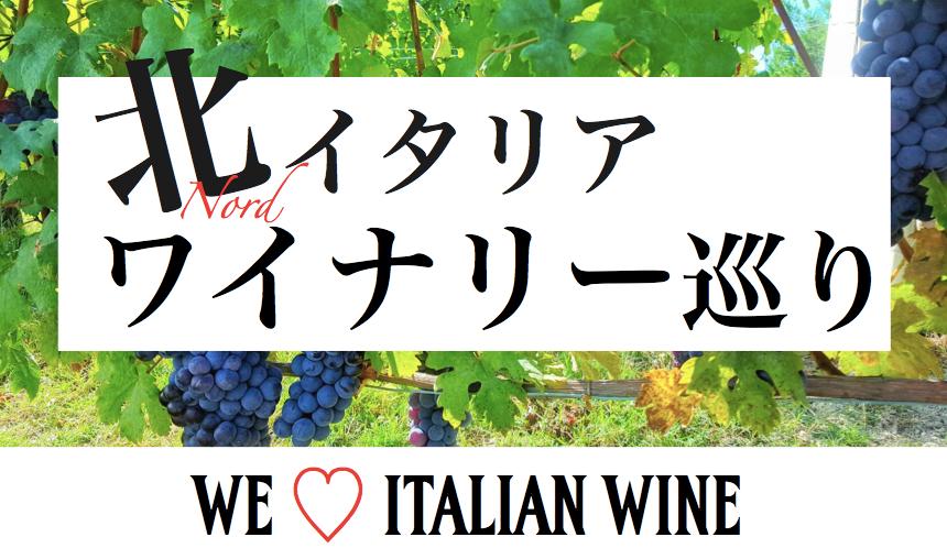 大人のワイン旅|イタリア・ワインの王様『バローロ』ワイナリーツアー