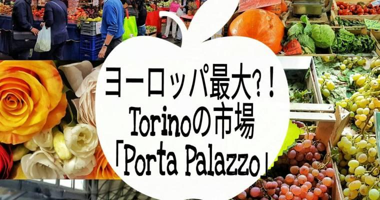 ヨーロッパ最大の市場がトリノに!共和国広場「ポルタ•パラッツォ」を散策♪