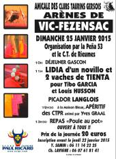 affiche_ctgers_2015