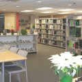 weston-family-library-large