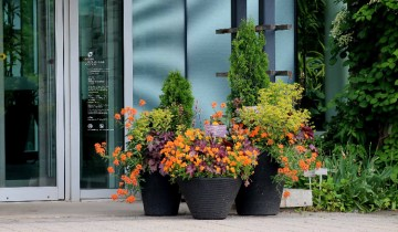 containers at front entrance-small