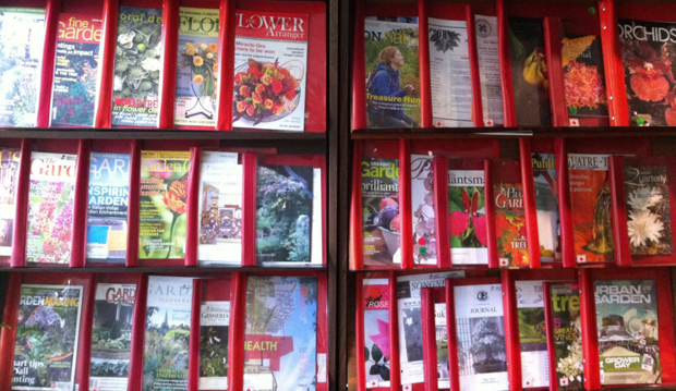 magazines in the library