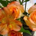 alstromeria and roses