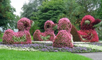 Topiary Whimsy2