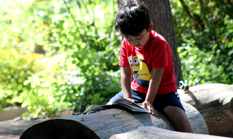 tbgkids boy reading a book on a log