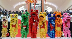 The eight lions parade for their grande finale during a lion dance performance at Scarborough Town Centre to help ring in the Chinese Year of the Dragon.
