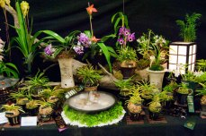 Many displays featured orchids along with other types of natural beauty, like this collection of greens.