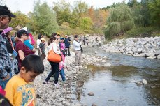 More than 100 people hike along Scarborough's Highland Creek on Sept. 29 during the annual Salmon Run on. They were there to see the spawning Chinook salmon and learn about conservation efforts.