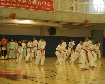 Orange Belts and Purple Belts demonstrating traditional Karate techniques.