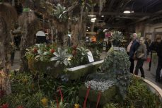 A variety of flower art displays are showcased.