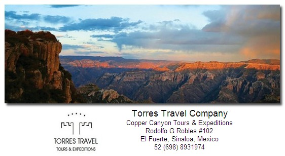 torres-travel-company