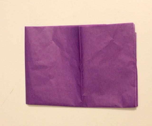 Tissue #3