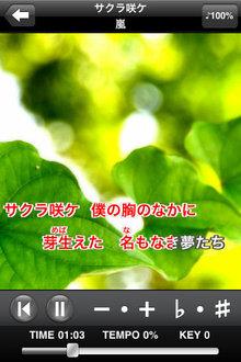 hanami_app_12.jpg