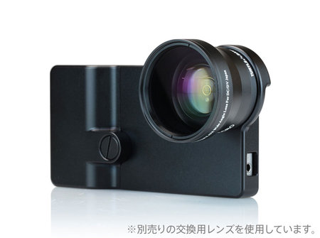 focalpoint_turtleback_0.jpg