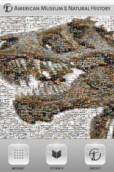 app_edu_dinosaurs_1.jpg