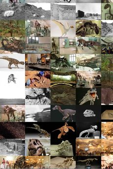 app_edu_dinosaurs_3.jpg