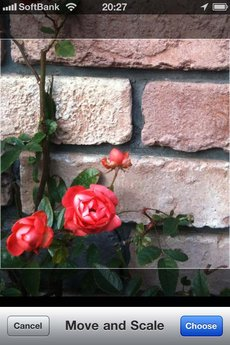 app_photo_cameratan_4.jpg