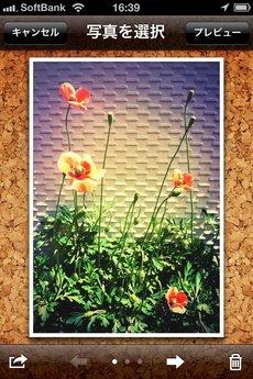app_photo_holosnaps_5.jpg