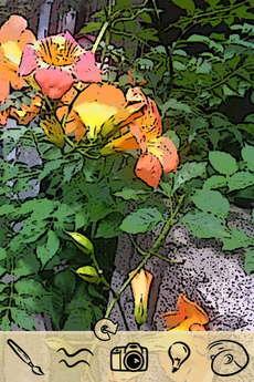 app_photo_tooncamera_2.jpg