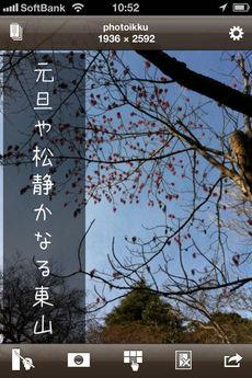 app_photo_photoikku_kinari_7.jpg
