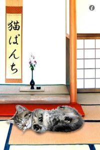 app_ent_kittyboxing_1.jpg