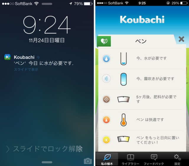 koubachi_plant_sensor_iphone_review_14