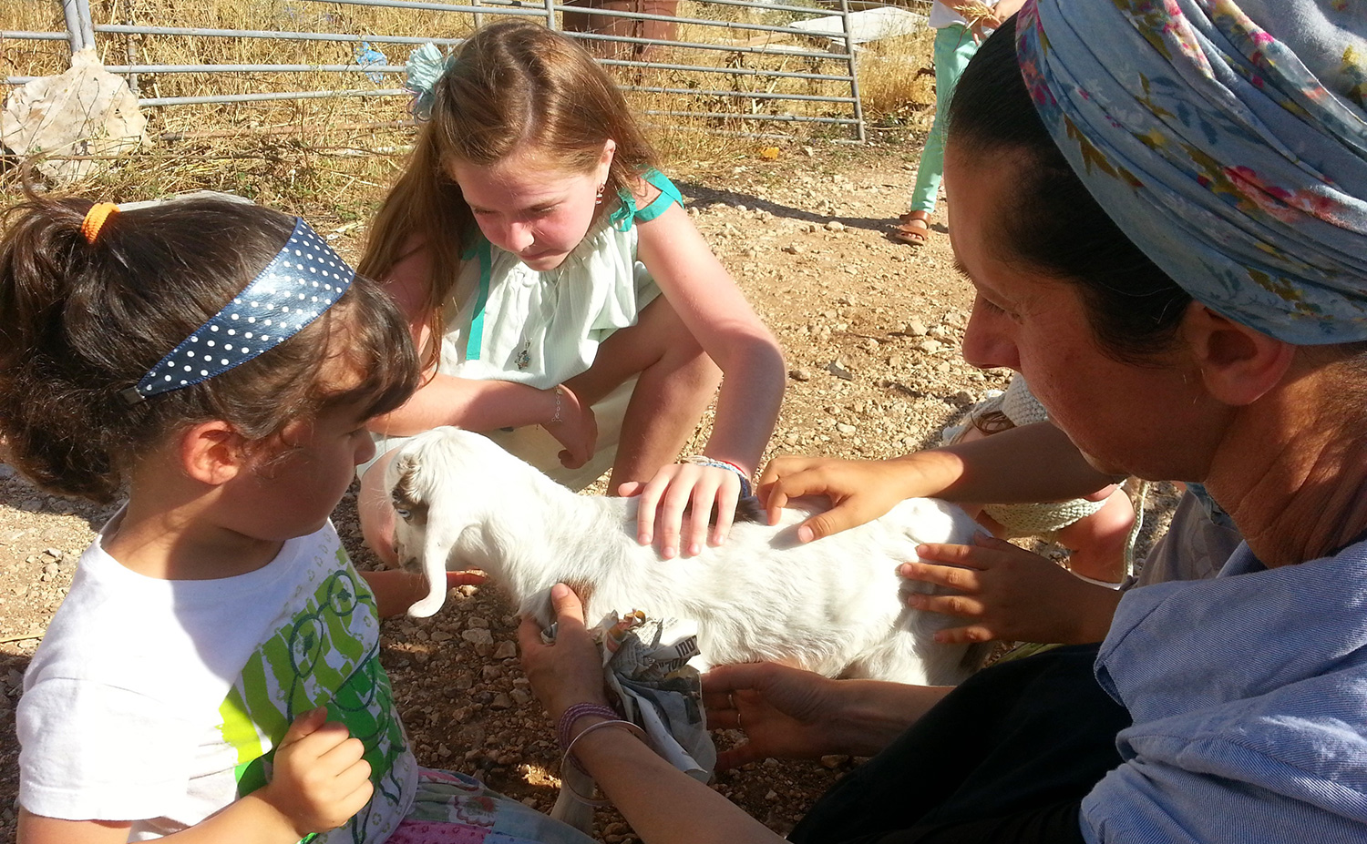 Visiting a Farm in Israel