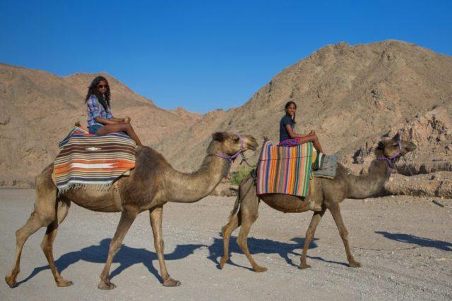 Adventure Tours - Camel rides