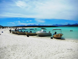 Isla Coronado Tour- Loreto Sea and Land Tours