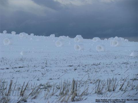 Snowrollers