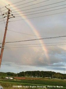 三木の虹画像@東洋マーク