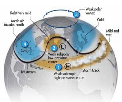ภาพอธิบายความหมายของ Polar Vortex ที่ขั้วโลก