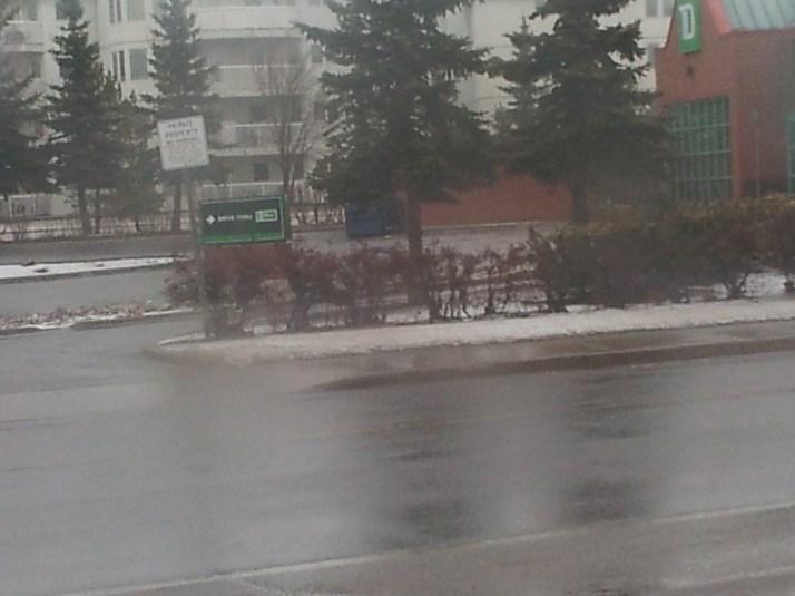 Bus Window