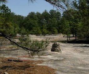 Davidson-Arabia Nature Preserve Trail