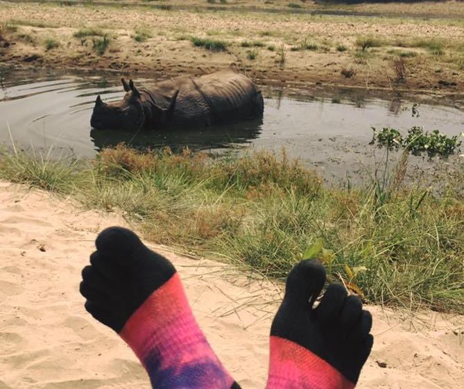 Rhino and Lightweight