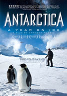 Antarctica: A Year On Ice - Trailer